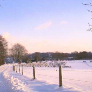 5 Paysage sous la neige