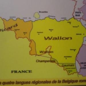 Le wallon