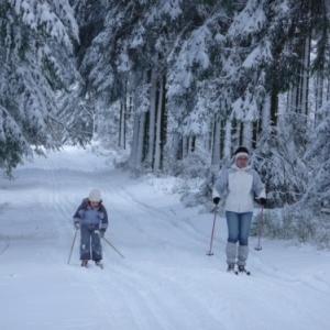 Sports de neige
