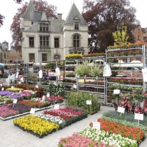Malmedy – Nouvel emplacement pour le marché du dimanche