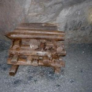 Des bois abandonnes sous terre depuis 100 ans