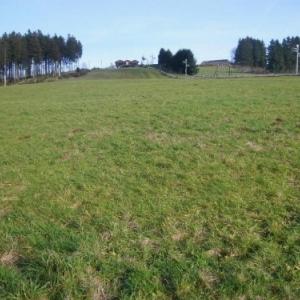 La piste a amenager ( vue du bas )