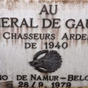 Vu au cimetière de Colombey les Deux Eglises