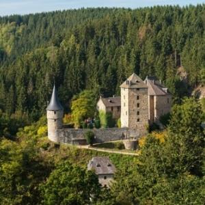 Le Chateau de Reinhardstein est un des lieux d'excursion preferes des touristes. Une visite historique du site se combine parfaitement avec une randonnee en pleine nature (Photo: ostbelgien.eu/D.Ketz)