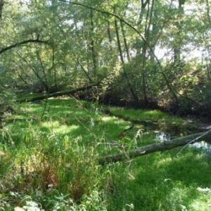 Le canal de Bernistap
