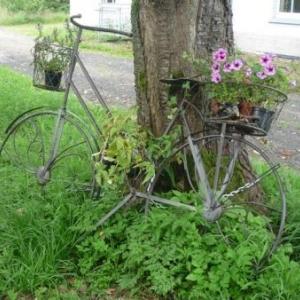 Arrivee a Waimes ou un cycliste est arrive depuis quelque temps