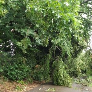 Arzelier : l'ancienne route de Solwaster est fermee