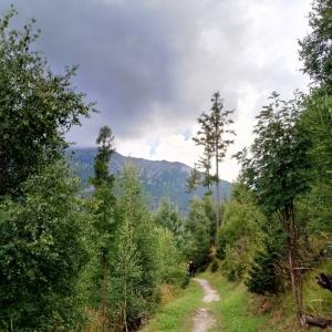 Vue sur les Hautes Tatras ( photo : F. Detry )