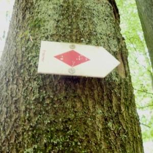 Signalisation de la randonnée