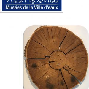 La Rondelle de chêne vieille de 351 ans !!