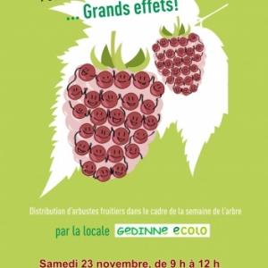 Arbustes fruitiers Gedinne Ecolo