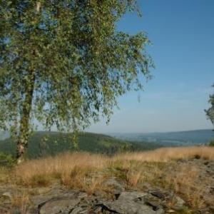 Vue du camp celtique a Salmchateau