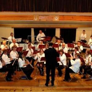 L'ensemble instrumental Royale Concordia de Salmchateau