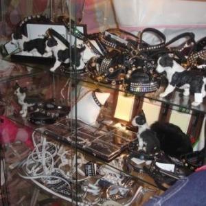 colliers de luxe pour chiens chics