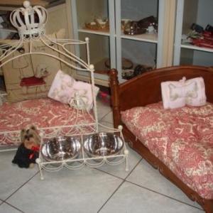 canapés et fauteuils de luxe pour un bel intérieur