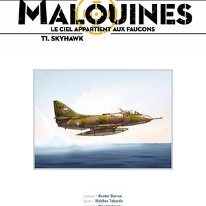 Malouines, Le ciel appartient aux Faucons (T1) - Skyhawk, N. Barron & W. Taborda – Editions Paquet.