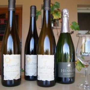 Domaine Oury