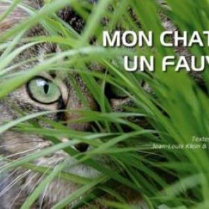 Mon chat, un fauve ? de JL Klein & ML Hubert  Editions Hugo&Cie.