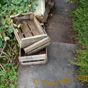 Caissettes bois sur plaques isorel