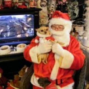 chanel avec papa Noel ,les chichis de carinne de Eghezee