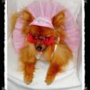 lady pour presente la robe louisdog ,casquette strass et les lunettes