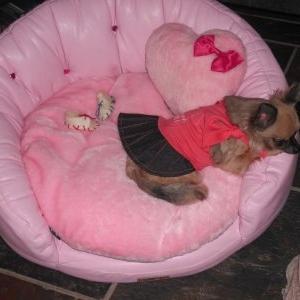 chanel avec sa robe dobaz et son nouveau salon rose