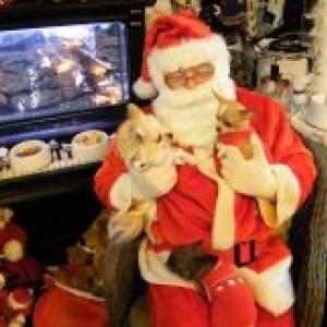 kenza et nina avec papa Noel ,les chichis de carinne de Eghezee