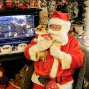 chanel avec papa Noel,les chichis de carinne de Eghezee