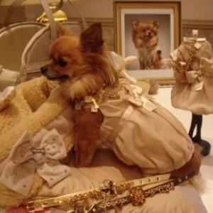 Lola vous presente la robe Haute couture
