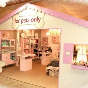 notre boutique For Pets Only vous accueille avec plus de 2000 articles de stock !