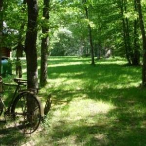 Ardennes - Magnifique chalet scandinave - à Hotton sur ourthe - pour 6/7 personnes