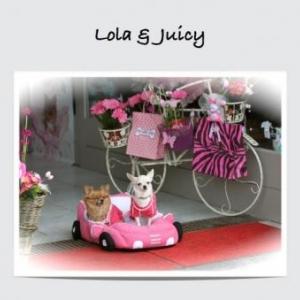 lola et juicy