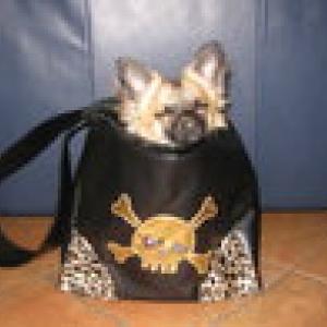 bounty avec son nouveau sac forpetsonly