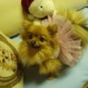 superbe petite danseuse en louisdog
