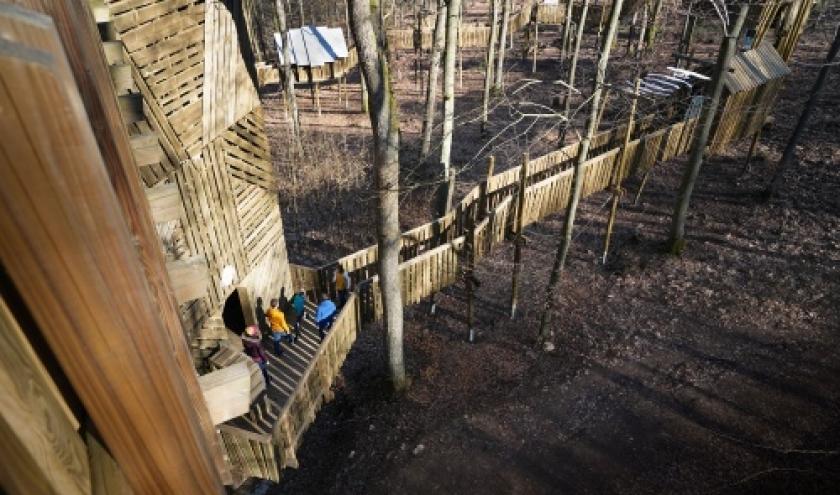 Parcours de decouverte dans la cime des arbres