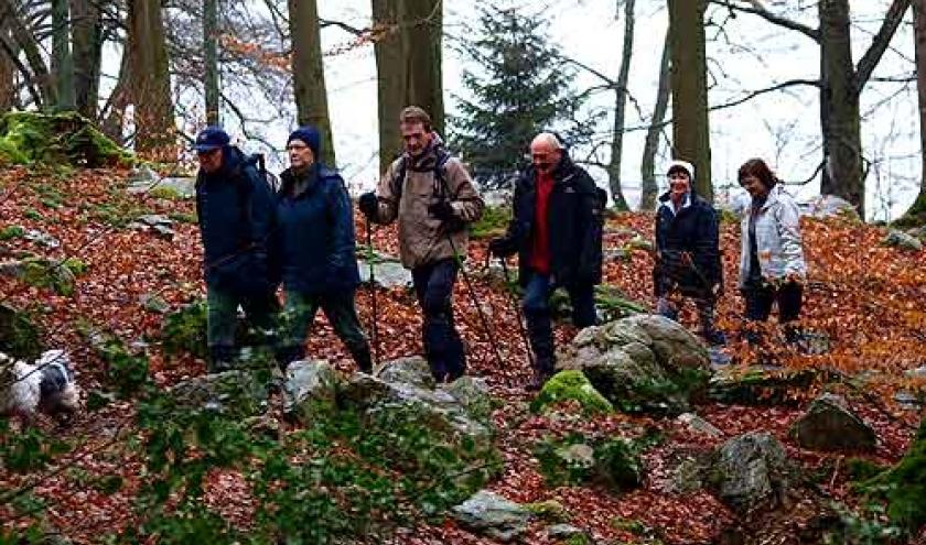 Scouts-Guides Pluralistes