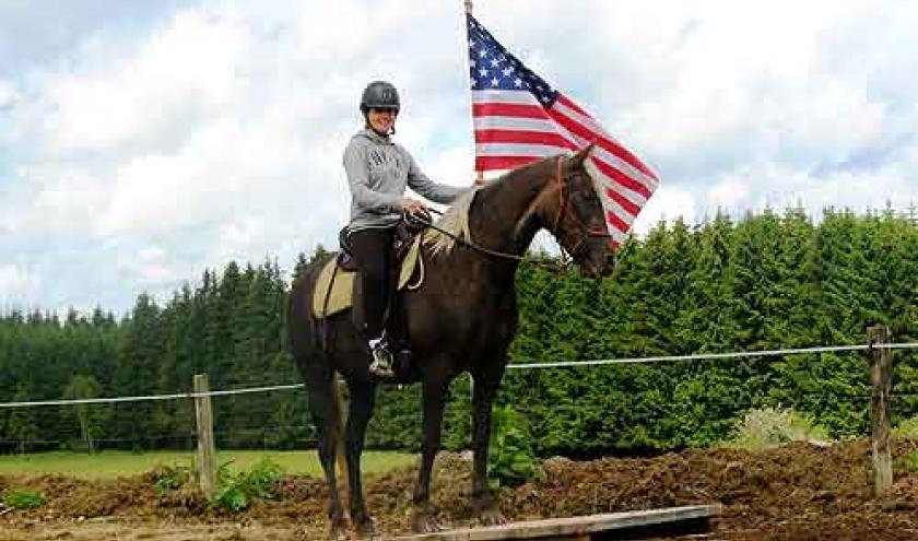 Elevage de Rocky Mountain Horse