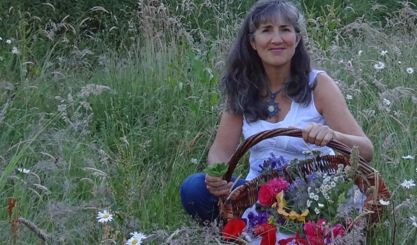 Françoise Gabriel Nos plantes sauvages  Comment les récolter, les cuisiner et les utiliser en remèdes