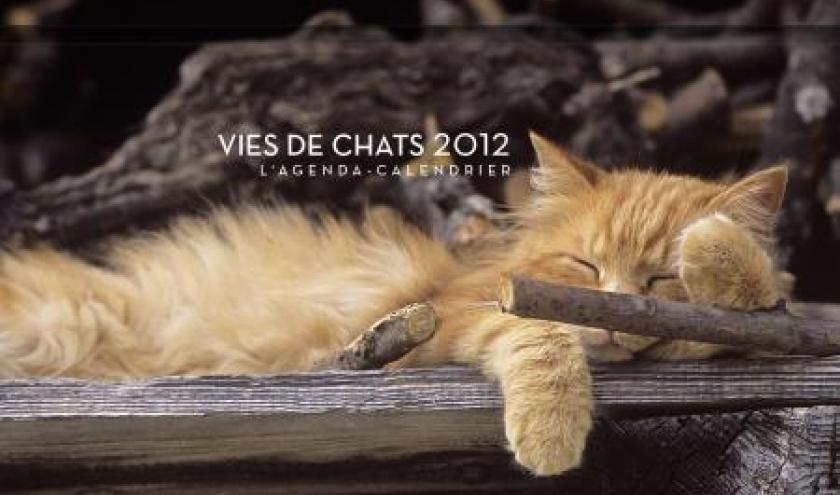 Vies de Chats Agenda 2012  Editions Hugo et Cie.