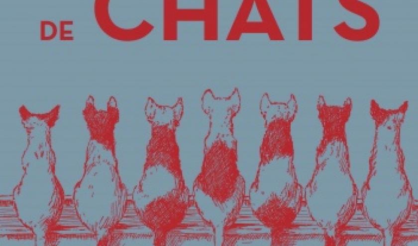 Breves de chats de Monique Neubourg  Editions HugoetCie.