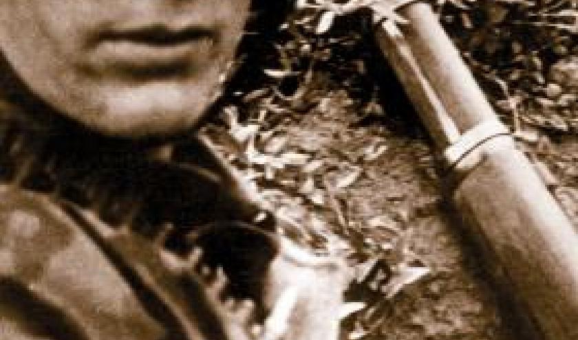 Requiem pour un jeune soldat de Renee Bonneau. Editions du Nouveau-Monde.