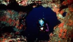 Underwater Diving - (c) Malta Tourism Authority