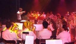 Brass Band de la Salm: video 02