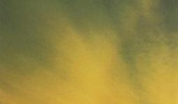 Roman pour la vie - Troisième partie : le cinquième évangile - chapitre 52 - Qu'est-ce que l'homme ?