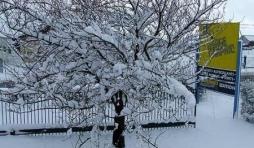 vue de la fenetre de notre bureau. 30cm de neige