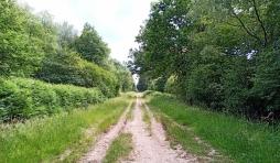 Sentier Spa - Malchamps vers Berinzenne