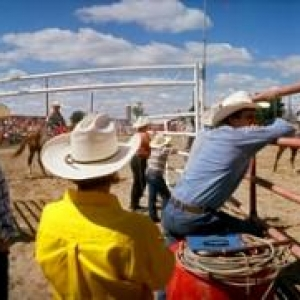 Cow-Boys canadiens en rodeo
