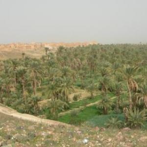 Une oasis en bordure de l'Atlas