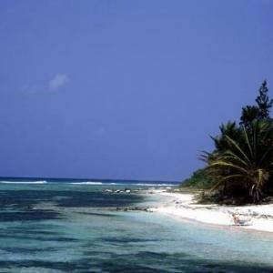 "(c) McDavid ""The Cayman Islands"""