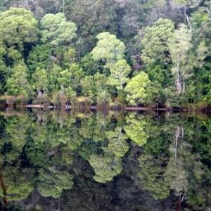 (c) Tasmania Department of Tourism